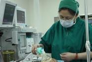 麻醉圣手罗爱伦:60年矢志不渝 甘做手术台上的幕后英雄