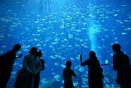 海南打造国际旅游消费中心