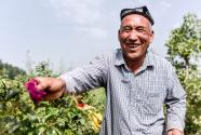 和田农民:从挖玉人到采花人