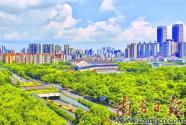中山:构建大湾区最具特色生态宜居城市