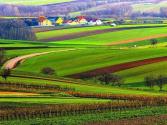 提升乡村治理现代化水平的着力点