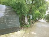 大巴山,一个自然保护区的脱贫之困