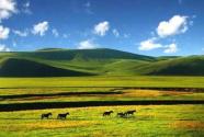 壯美北疆 綠色畫卷——內蒙古全力構筑北疆萬里綠色長城