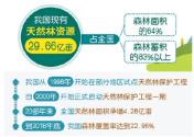 天然林保护——修复更全 监管更严(权威发布)