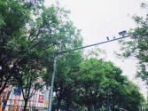 北京静态交通管理大规模应用人工智能成效突显