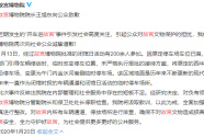 故宫博物院院长王旭东向公众致歉