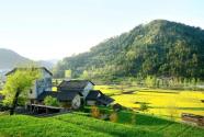 推動脫貧攻堅和鄉村振興有效銜接