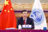 习近平:上海合作组织应高举上海精神旗帜